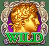 Symbol wild