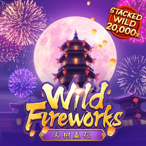 wild-fireworks